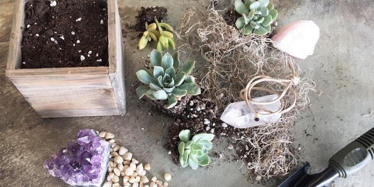 planthropy