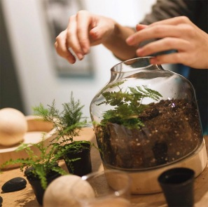 terrarium+workshop