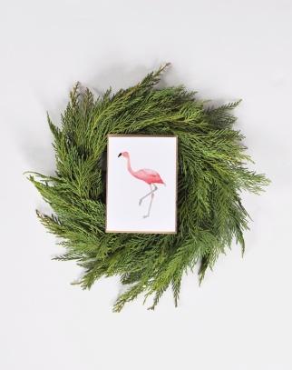 Anne Green Designs