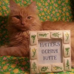 Stitch Hussy
